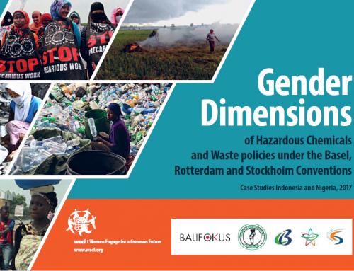 Gender dimensions of hazardous chemicals (documentary)