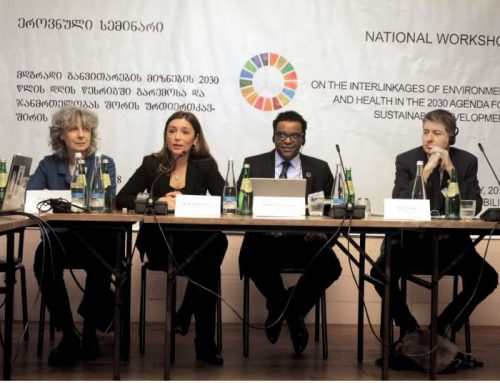 Report on National Workshop on SDGs in Georgia
