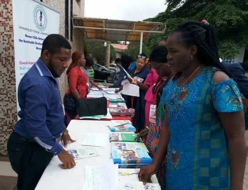 Localising the sustainable development goals in Nigeria