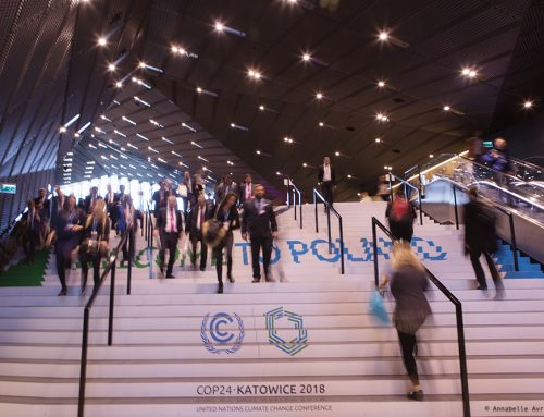 A gloomy future for climate finance at COP24