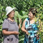 image for photoessay Women's rights and traditional knowledge are crucial for conserving biodiversity in Kyrgyzstan